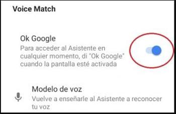 9. Vérifiez que Ok Google configurer